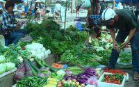 Giá cả thị trường, giá cả, giá dừa bến tre tăng mạnh