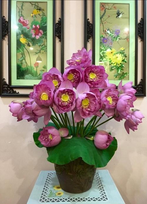hoa lan, hoa cúng rằm tháng 7, những loại hoa dùng cúng rằm tháng 7