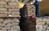 xuất khẩu cà phê trong tháng đạt 156.258 tấn (tương đương 2.604.300 bao, bao 60kg)