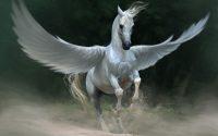 Mơ thấy con ngựa đánh số gì? Điềm báo lành hay dữ?